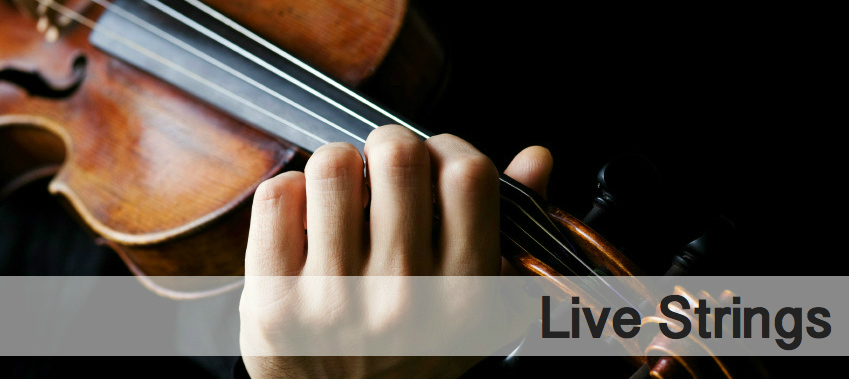 Live Strings