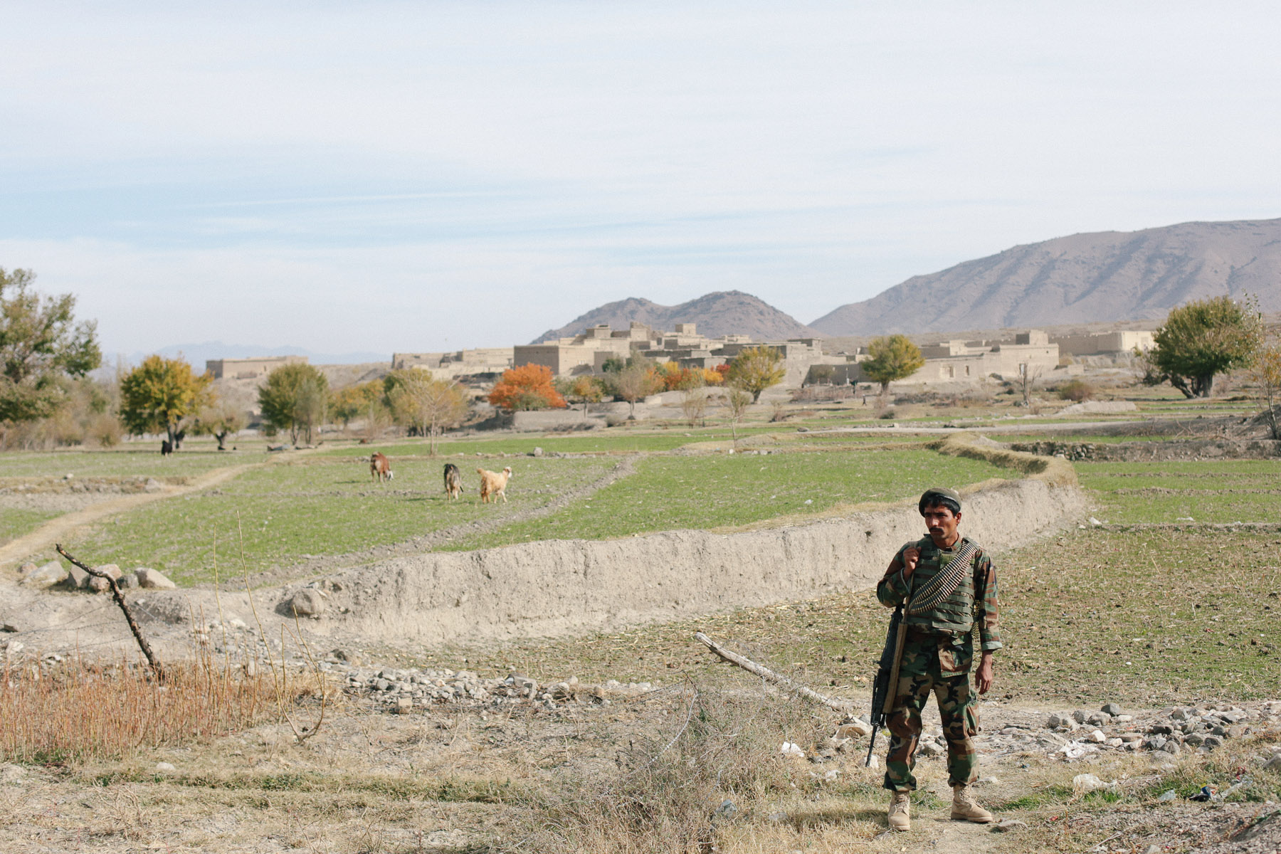 An Afghan National Army soldier pauses on patrol near the Pakistan border. Many ANA soldiers are from distant parts of the country, do not speak the local dialect, and may be considered by locals nearly as foreign as ISAF personnel.