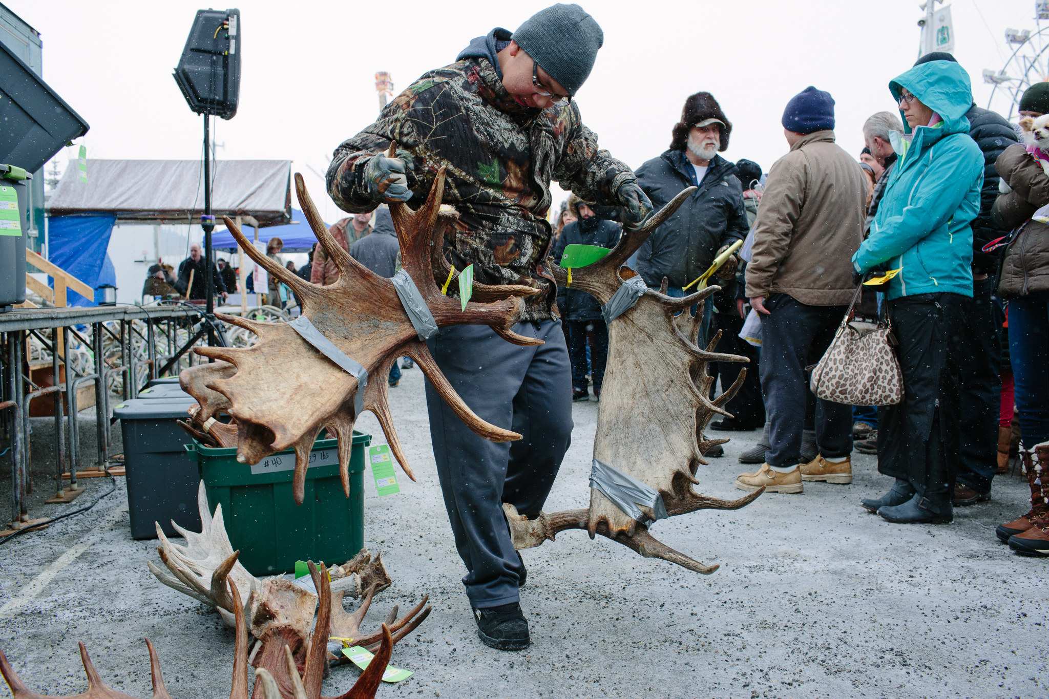 A volunteer brings over moose antlers to be bid upon by the crowd. Many bidders were artisans who will use the horns for carving and other commercial resale purposes.