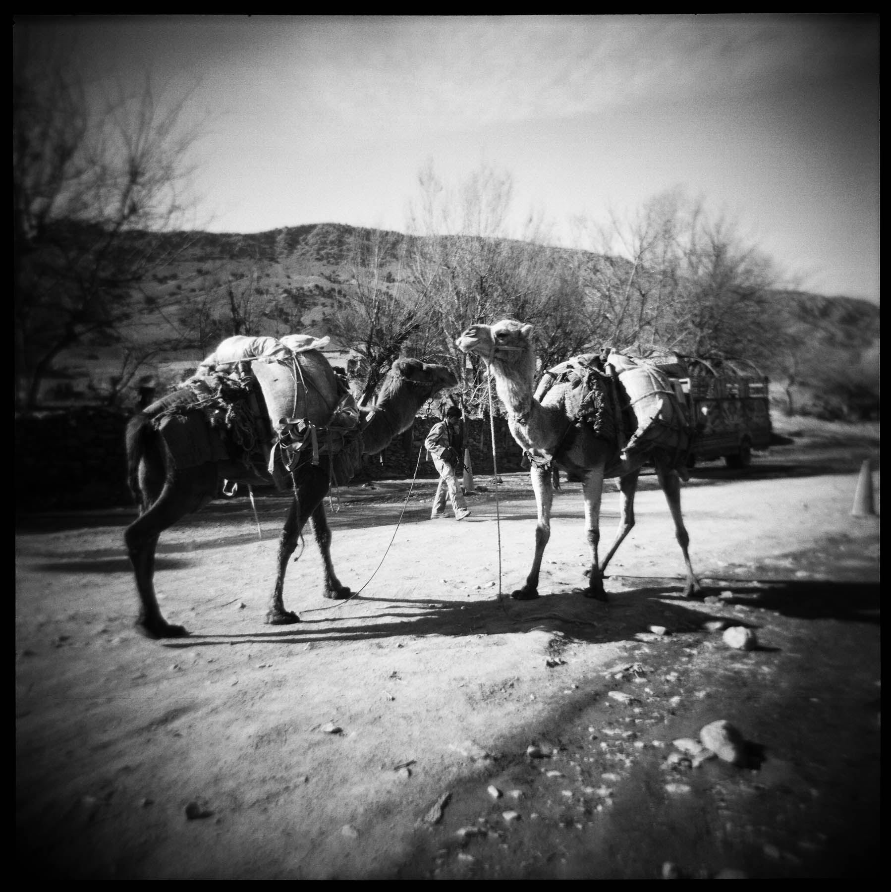 "An Afghan Border Police member and camels owned by ""Kuchi"" nomads at the border crossing between Pakistan and Afghanistan near FOB Tillman in Gayan District, Paktika Province, Afghanistan. 2011."