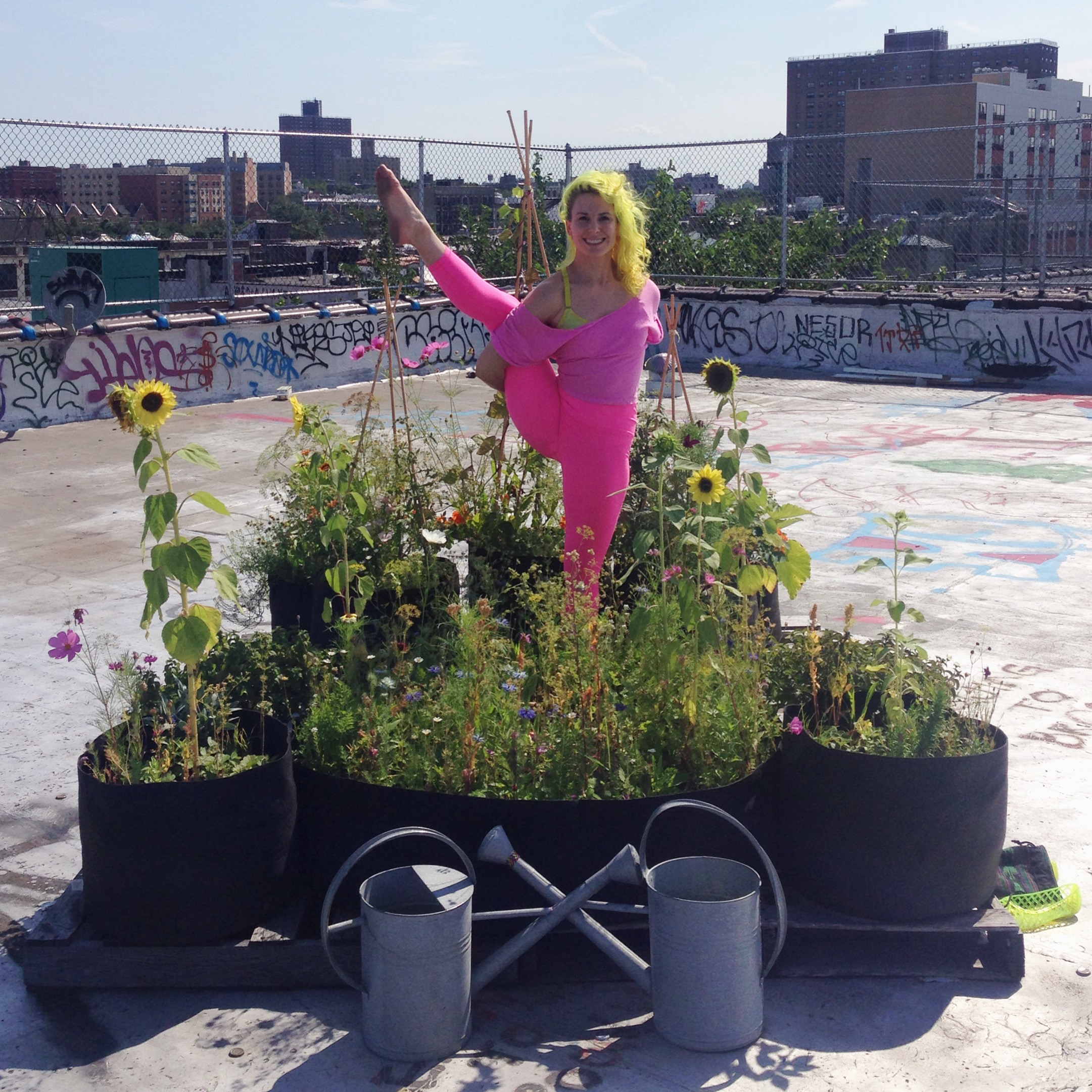 Tending my roof garden in Brooklyn