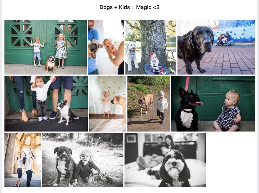 2 of my favorite things to photograph ever… puppy dawgs and babas ❤️