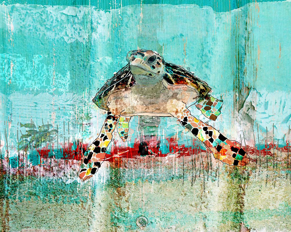 Sea Turtle 1.0