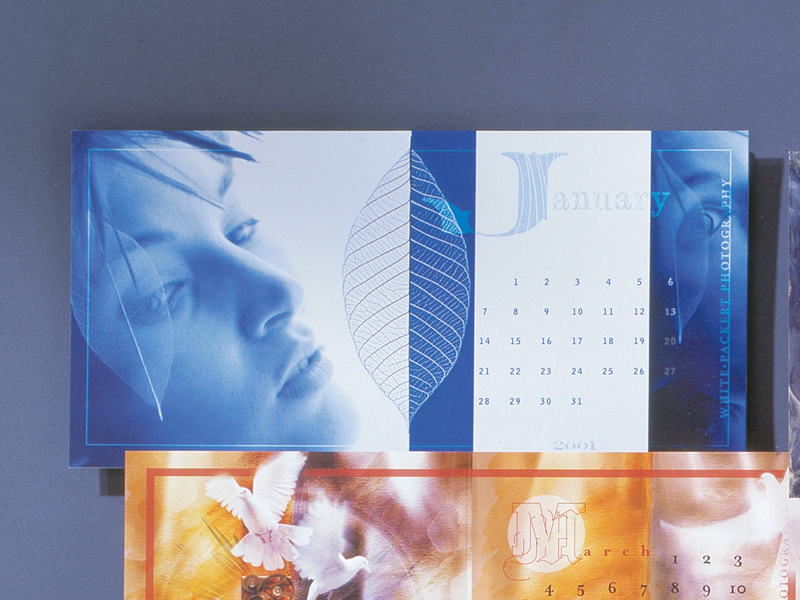 White Packert Photography | 2001 Calendar Promotional Mailer Design