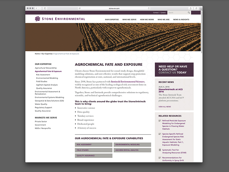 interrobang-design-stone-website-1.jpg