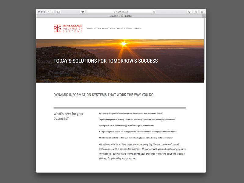 Renaissance Information Systems Website Design |  view site