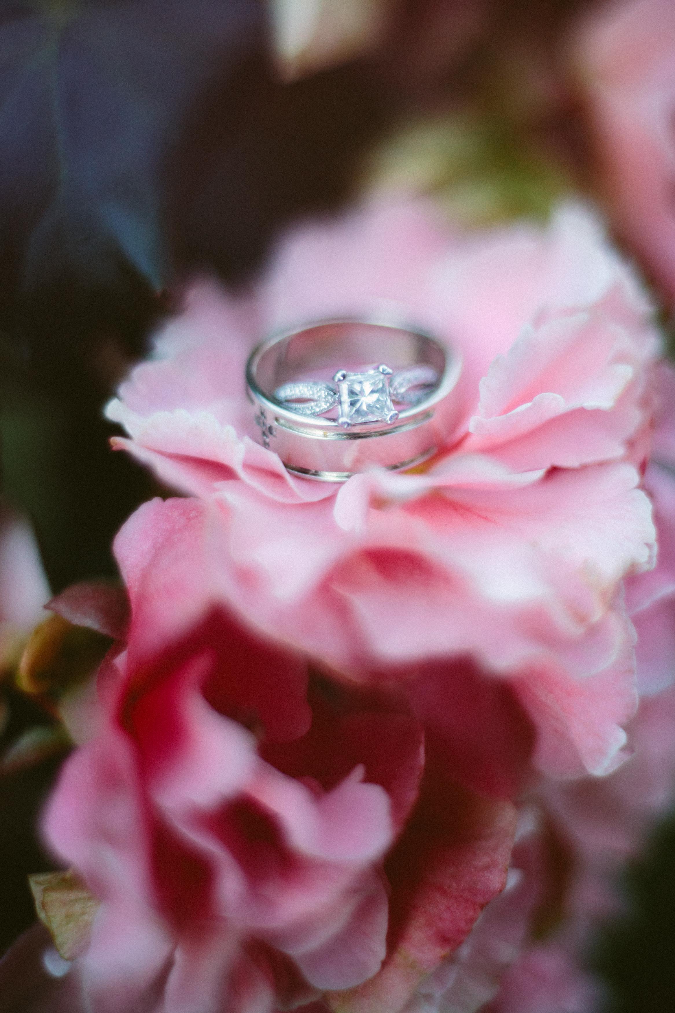 Rick-Elizabeth-Wedding-488.jpg