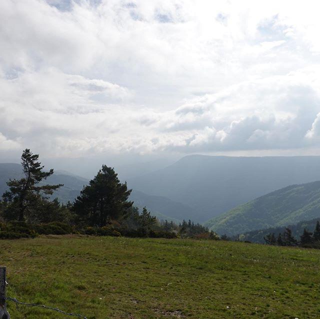 Beautiful France in the central massif (near Prévenchères, Lozère) #tourdumassifcentral #cyclotouring #lozere #france #travelphotography #traveller #hiker #randonneur #velorando #occitanie #cyclotourisme