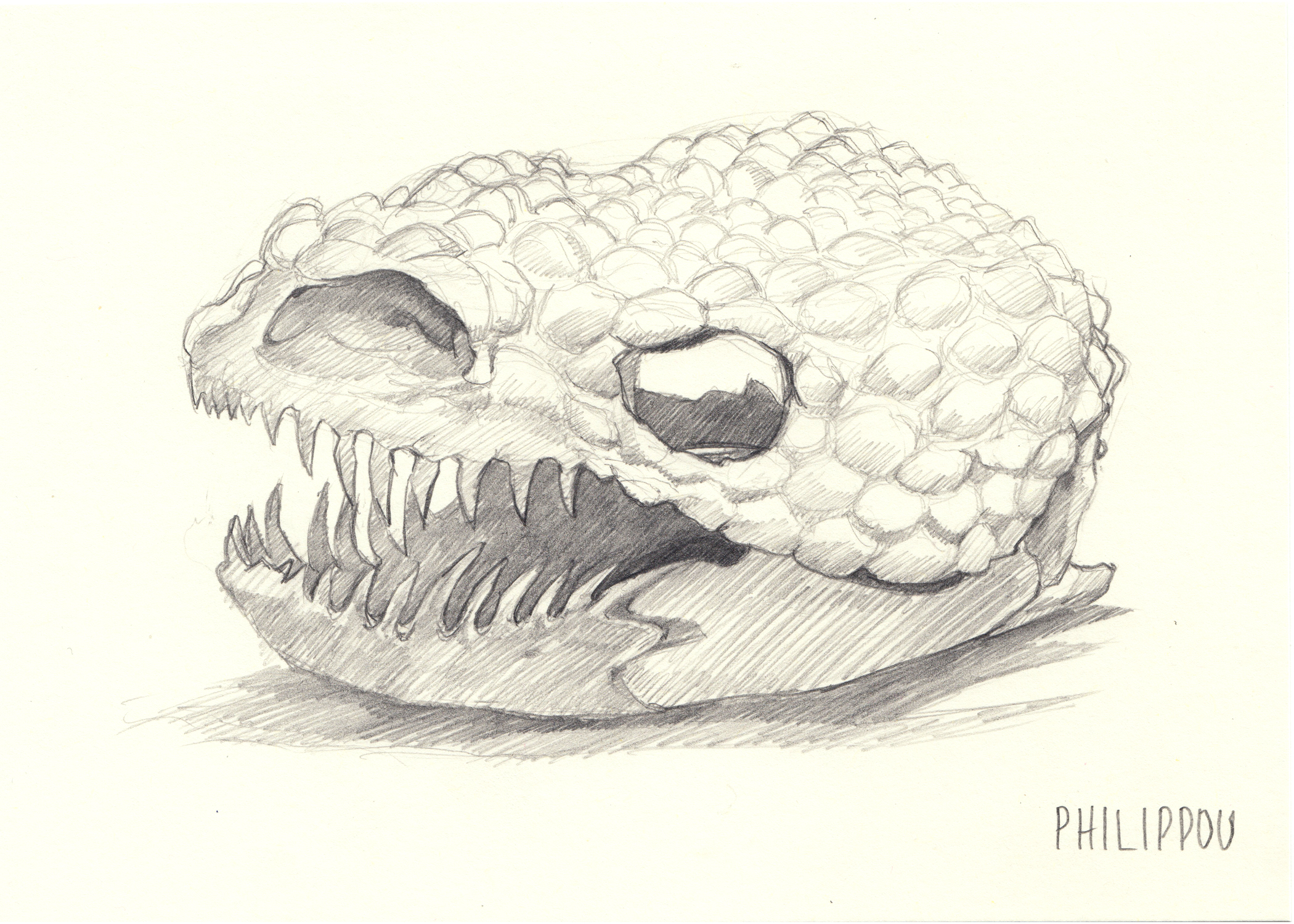 GILA-MONSTER | Study