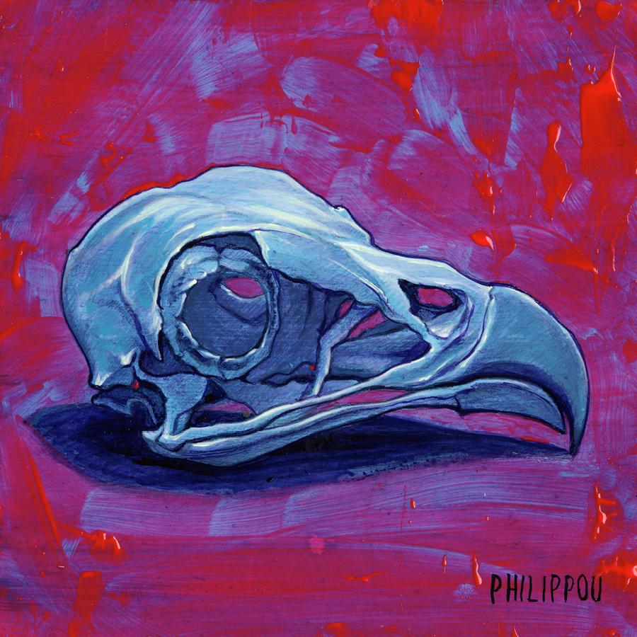 OSPREY SKULL | Painting