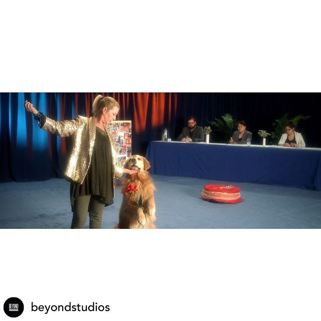 "#FBF Posted @withrepost • @beyondstudios Debuting on Noisey, ""Playgrounds"" is Quiet Friends debut single.  Directed by Hayden Hoyl, ""Playgrounds"" is the strangely affecting story of a woman and her troupe of dog dancers, striving slowly to regain the emotional highs their former glories as champion performers."" -Colin Joyce for Noisey  Producer: @nscandiffio  Director: @haydenhoyl  DP: @patrickhanover  AC: @seandahlberg  AC: Dylan Pailes Freidman Set Designer: Dakota Pailes Freidman  #beyondmade #nyc #newyork #brooklyn #bushwick"