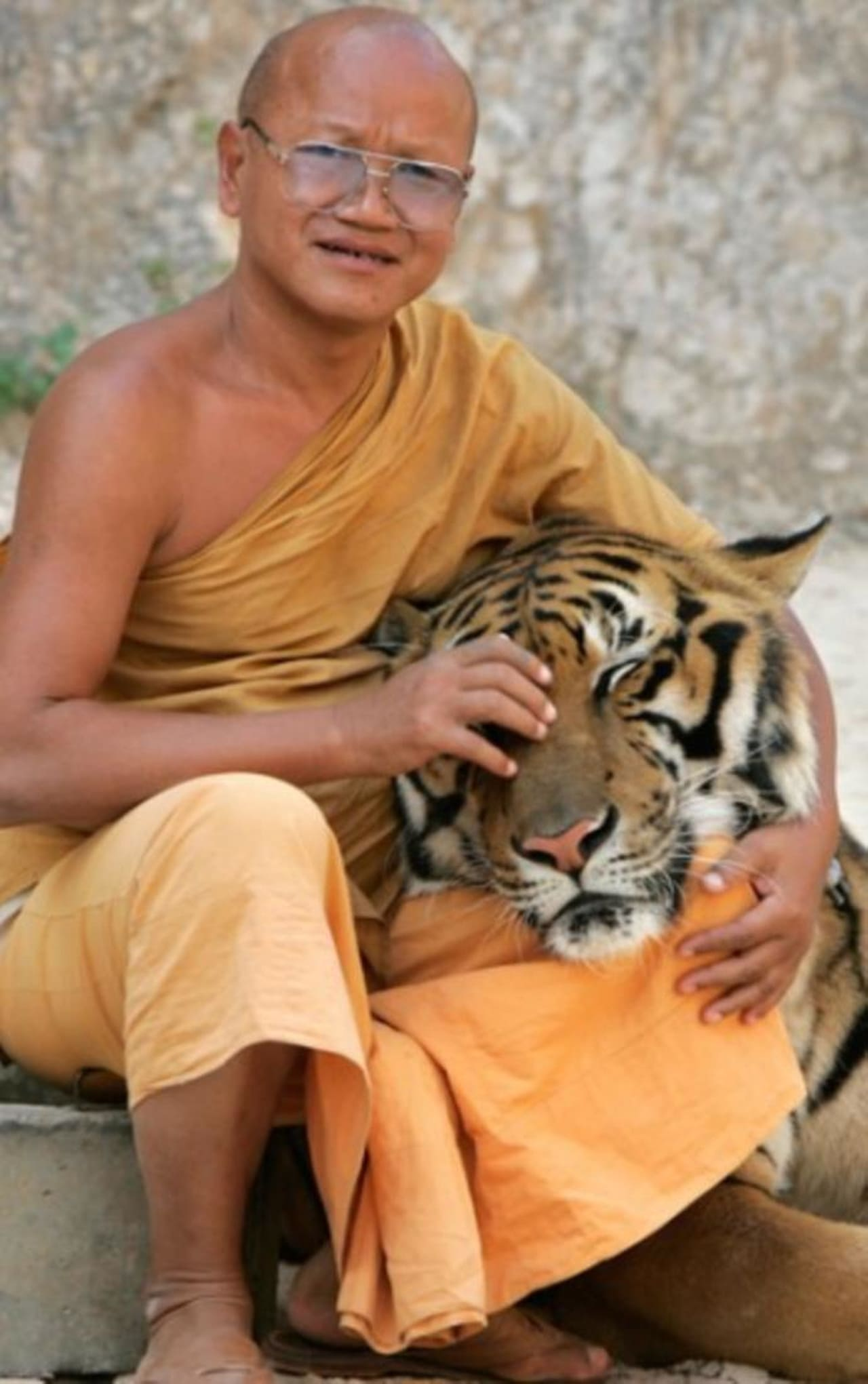 The Tiger and the Monk (2007)