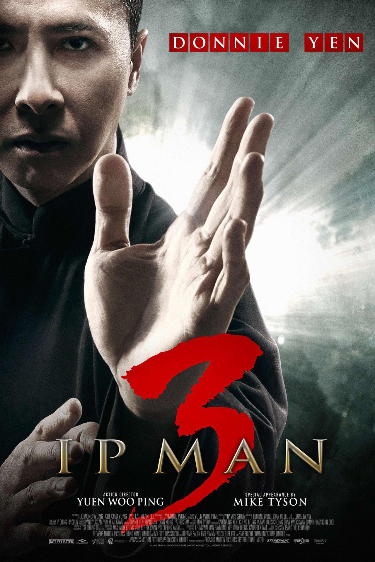 Ip Man Series