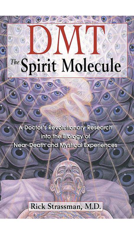 DMT The Spirit Molecule by Dr. Rick Strassman