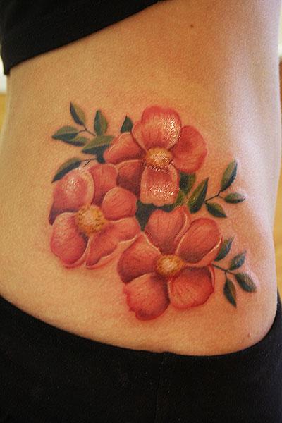 Prairie roses