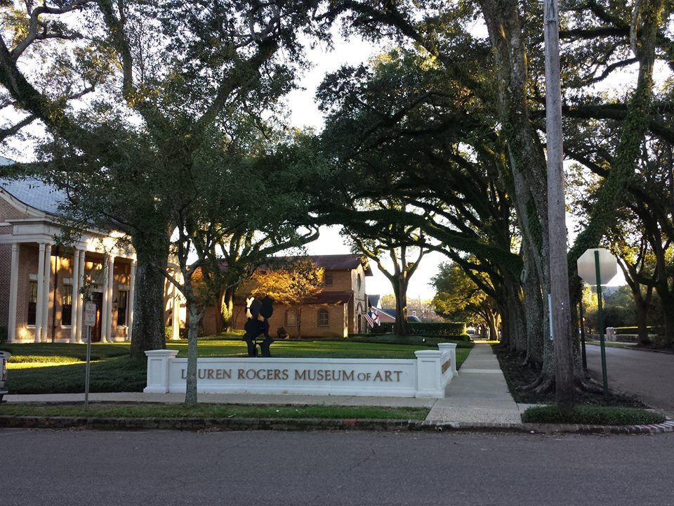 Live oaks!! tunnels of green in every direction. What a lovely neighborhood!