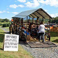 Hay Ride.jpg