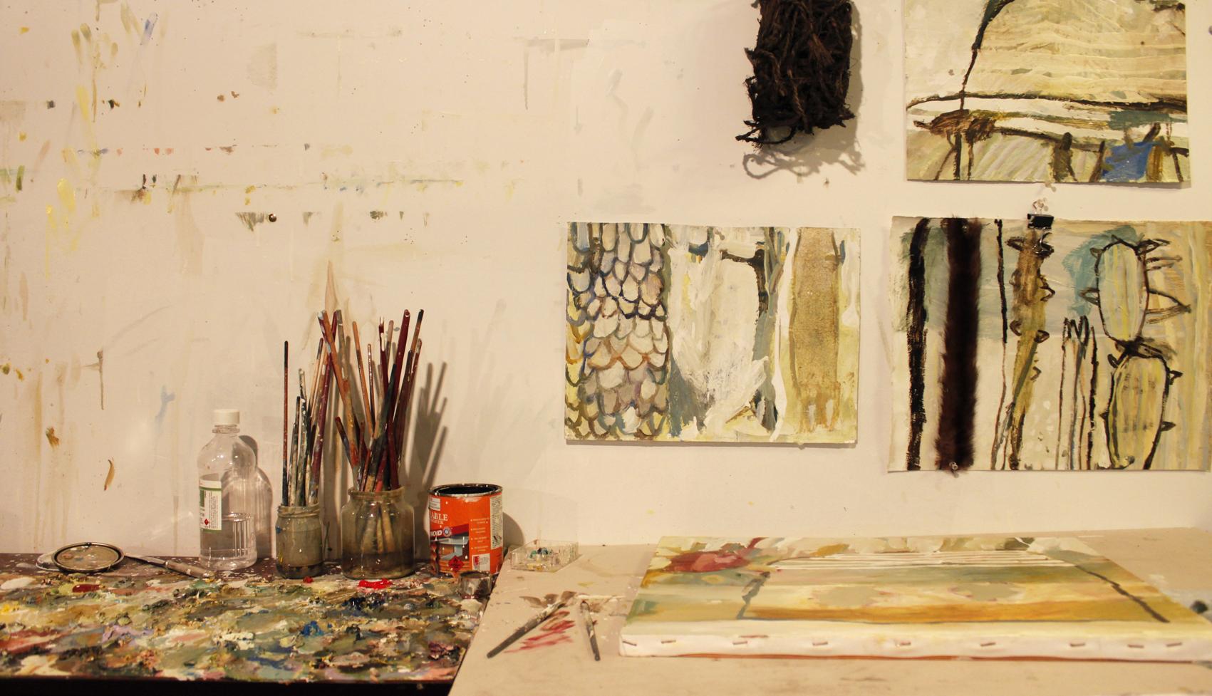 Australian Artist studio visit - Jaq Davies, The Corner Store Gallery, Orange NSW, photograph by Madeline Young