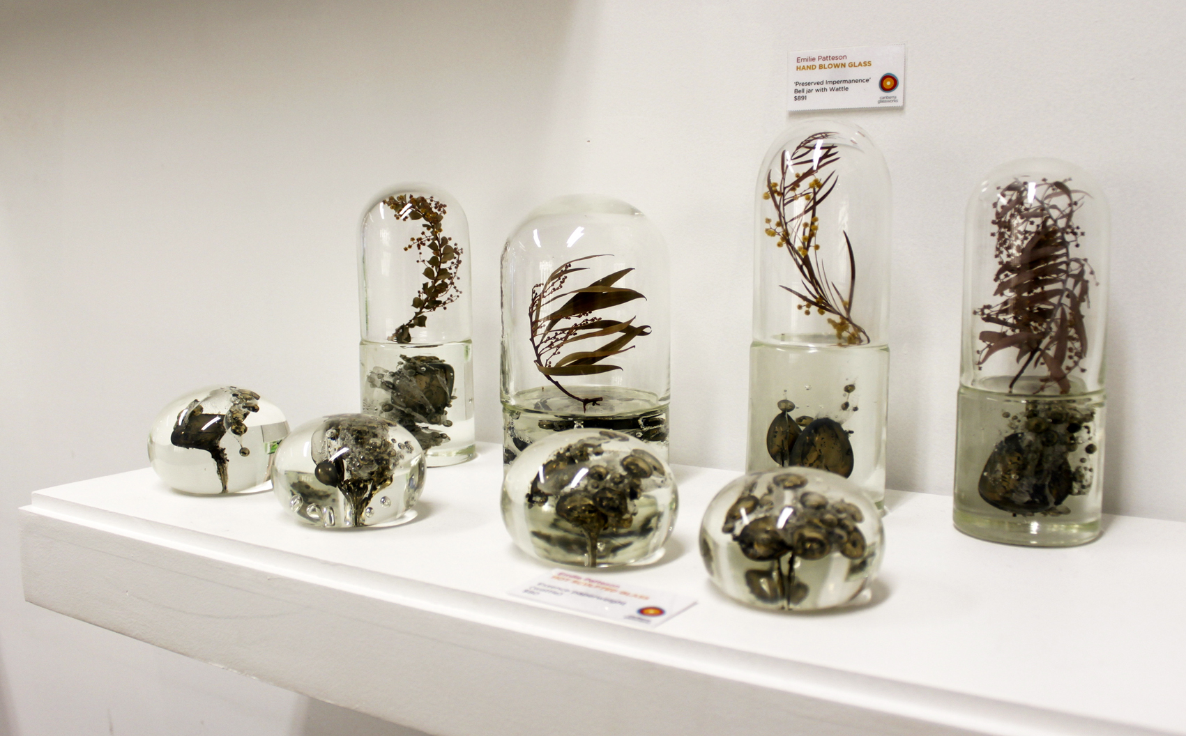 Emilie's work in the foyer of Canberra Glassworks.