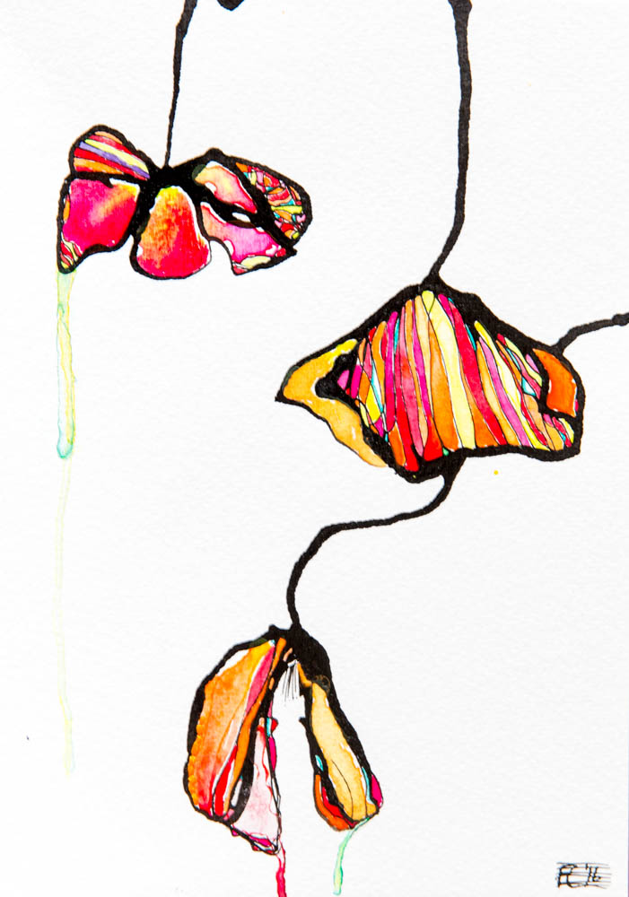 Australian Artist Fiona Chandler - The Corner Store Gallery
