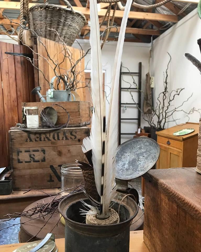 Bower Bird Old Wares
