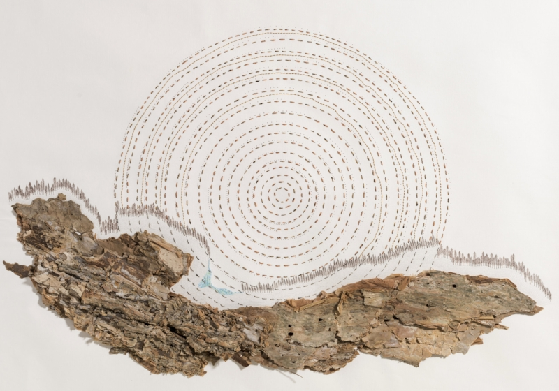 The Corner Store Gallery - Australian ceramicist and illustrator Tracy Dickason