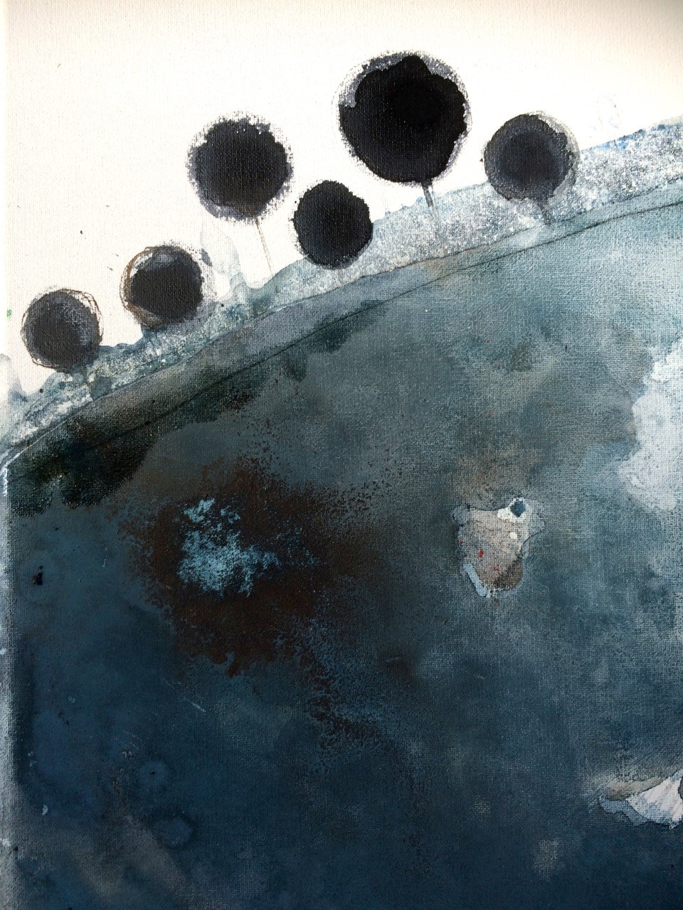 The Corner Store Gallery - Fiona Chandler