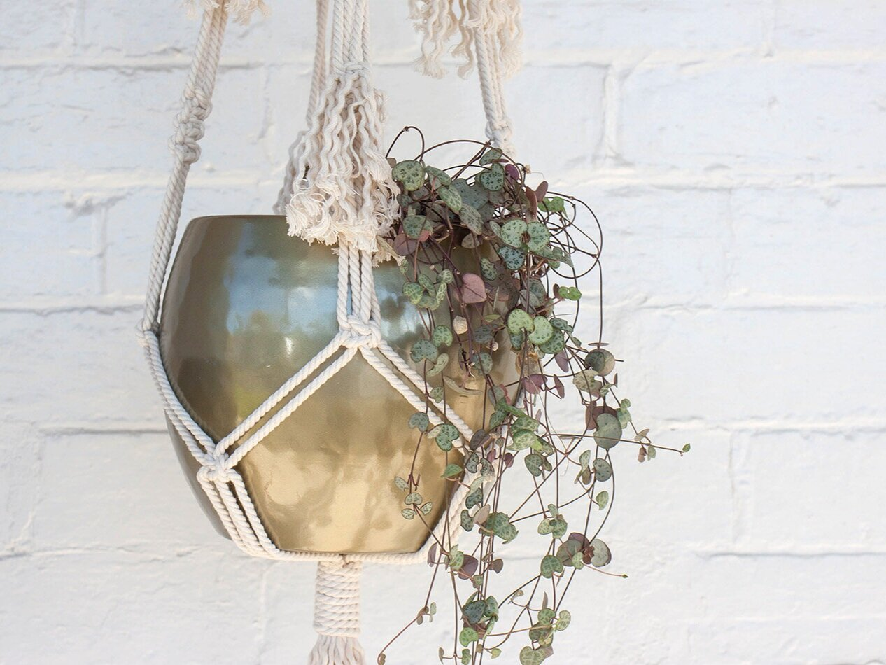 Macrame Plant Hanger - $70 per person, 4-9 people, 2 hours