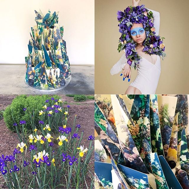 I find inspiration everywhere.  When conjuring up this 'Spring Shards' design I was inspired by the palette, the blooms and the full on all over flora featured in this fab pic by @electricdaisyflowerfarm (top right) this is Ms March from the #edffcalendar2018 featuring anemones  and ranunculus.  The headdress was inspired by Spanish lace mantilla worn by the women of Seville over Easter weekend.  Love the playful nature here and this update of a classic Spring palette.  Eat Your Art Out.