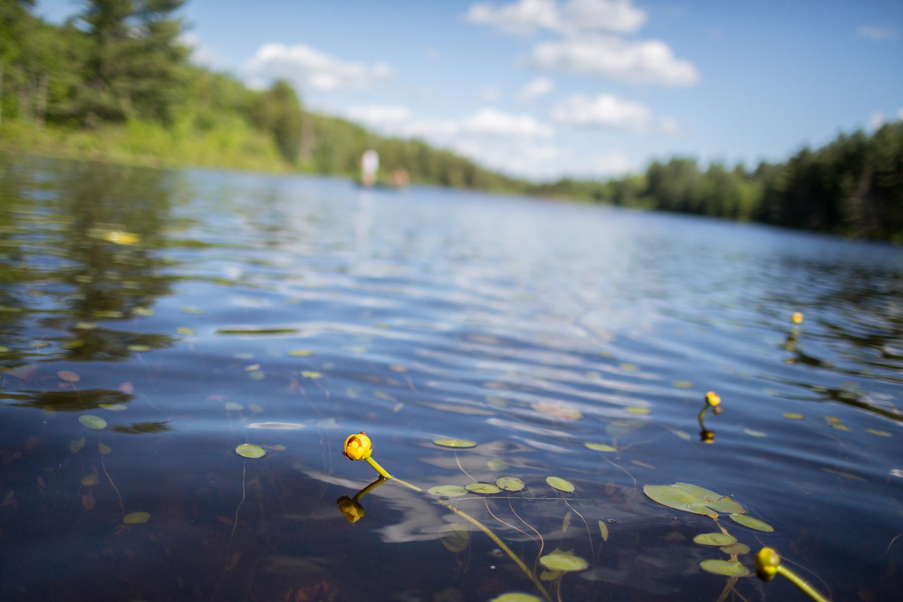Yoga2Go_Canoeing-5.jpg