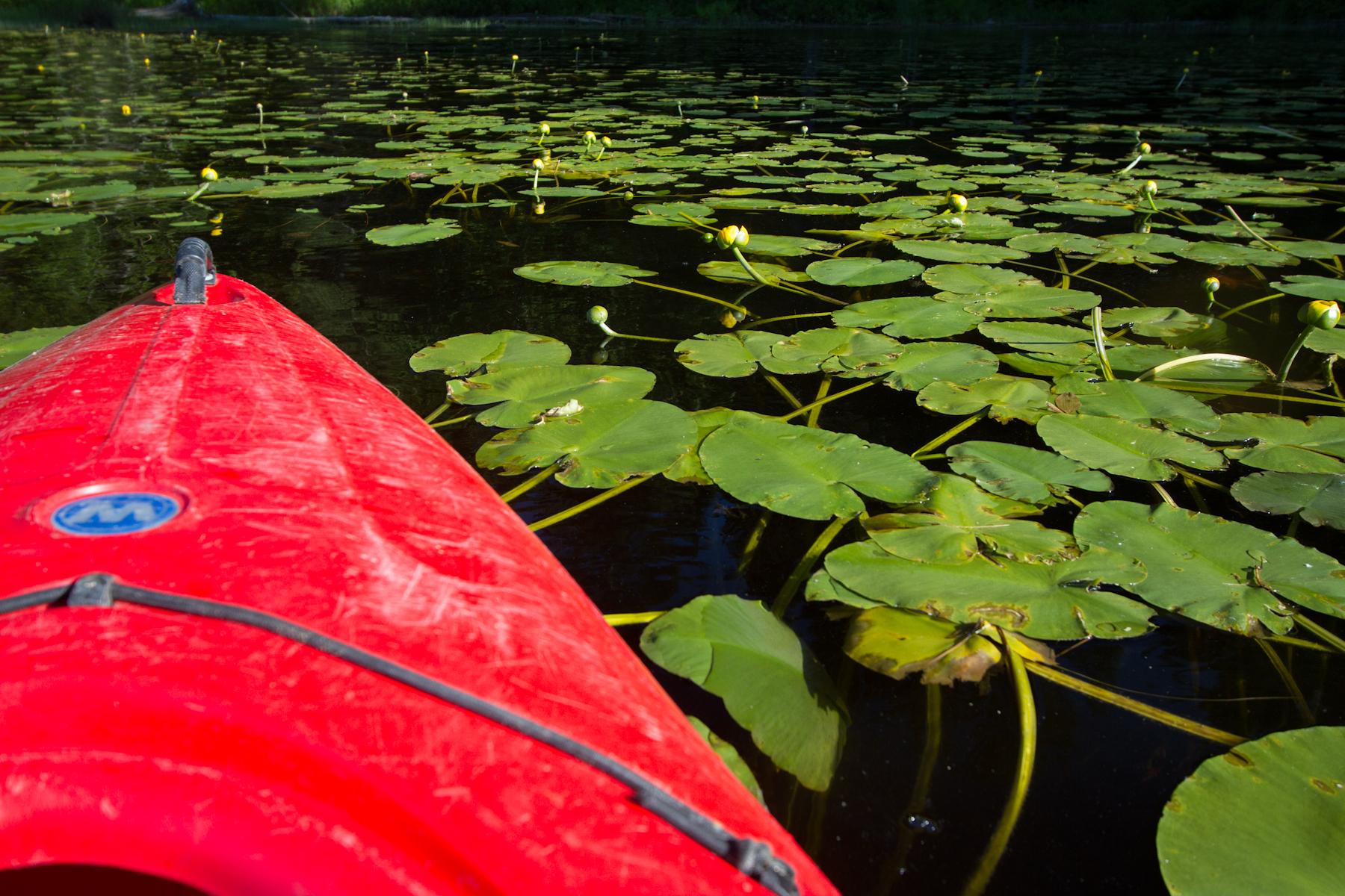 Yoga2Go_Canoeing-22.jpg