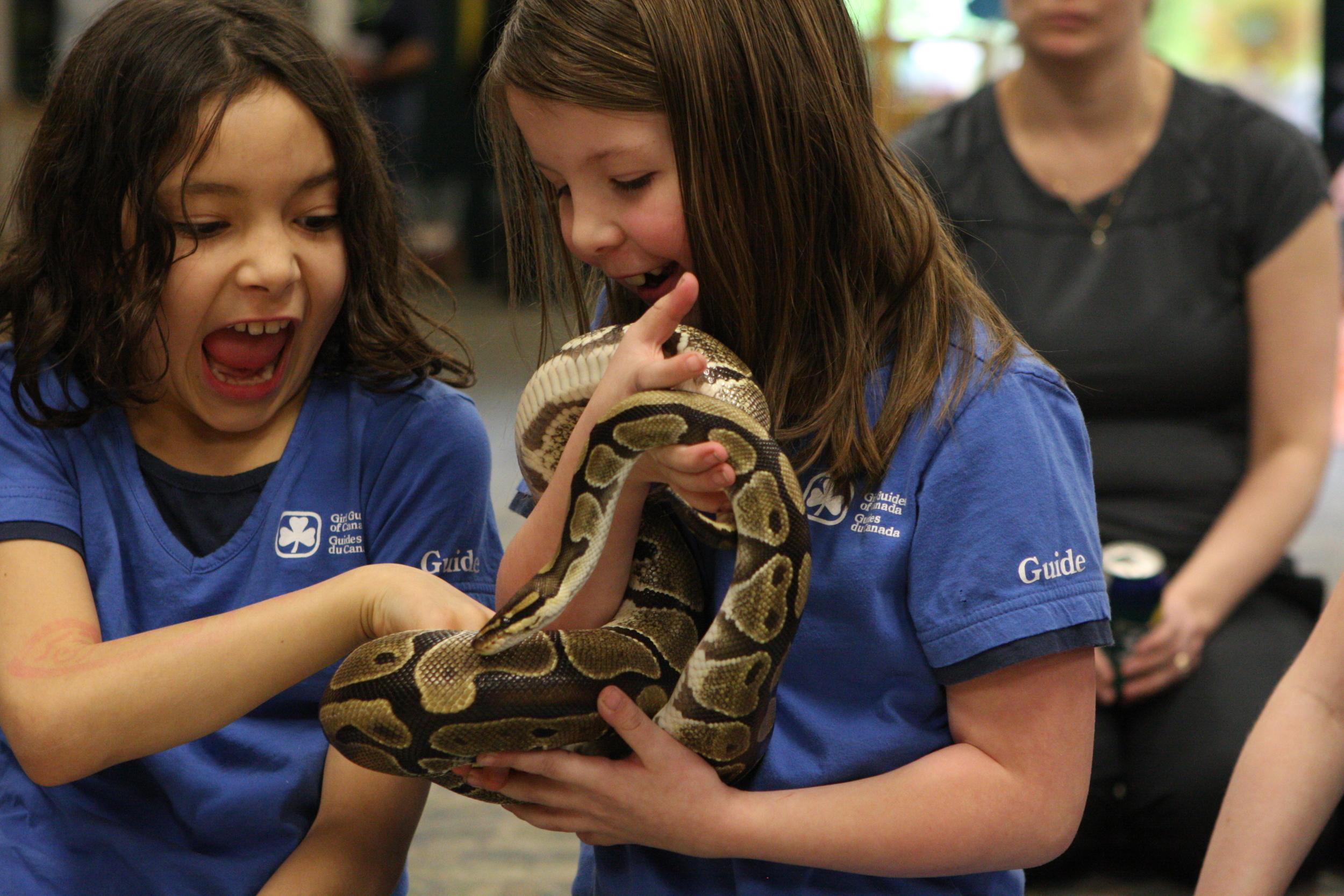 kidsphere python 9.jpg