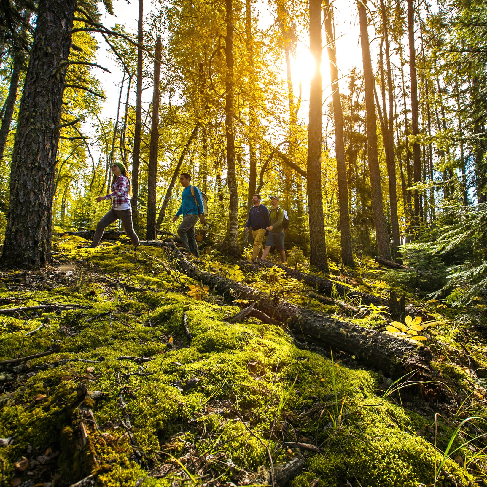 Prince+Albert+National+Park+Hiking+Forest+Experience+Saskatchewan.jpg