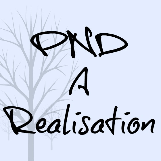 PND realisation.jpg