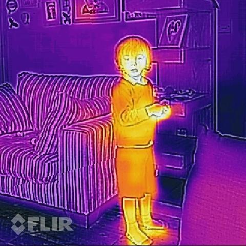 flir_19700125T020418.jpg