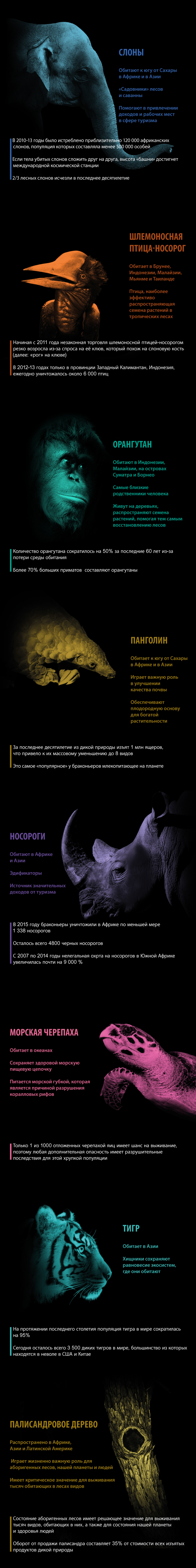 ITW_infog2_ru.jpg