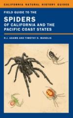 Spiderbook.jpg
