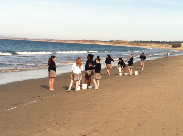 Students in the LiMPETS program monitor sand crabs in Monterey Bay.
