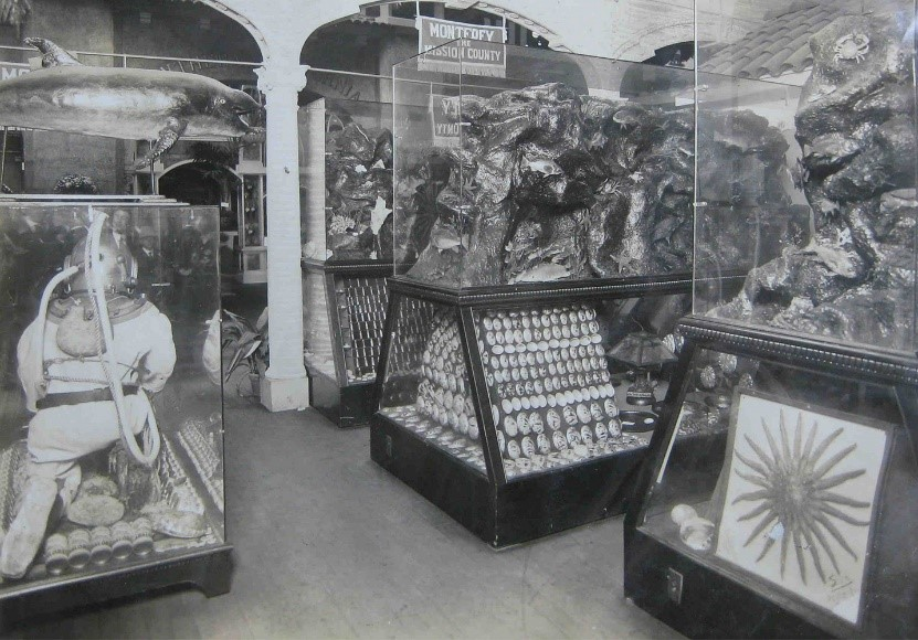 Monterey County's marine exhibit at the Panama-Pacific International Exposition in 1915.