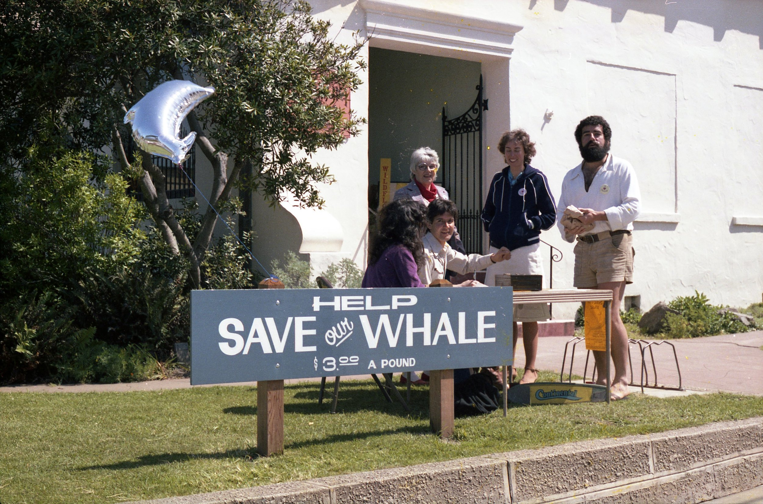 Whale Day!  March 13, 1982.  Milos Radakovich (seated) and David Shonman (standing)  lead the campaign and fun!  Sandy is in her original location off of Forest Avenue.