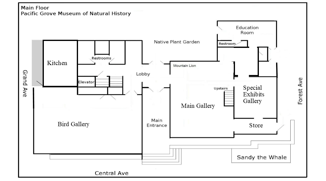 Museum floor plan excluding floating exhibits.