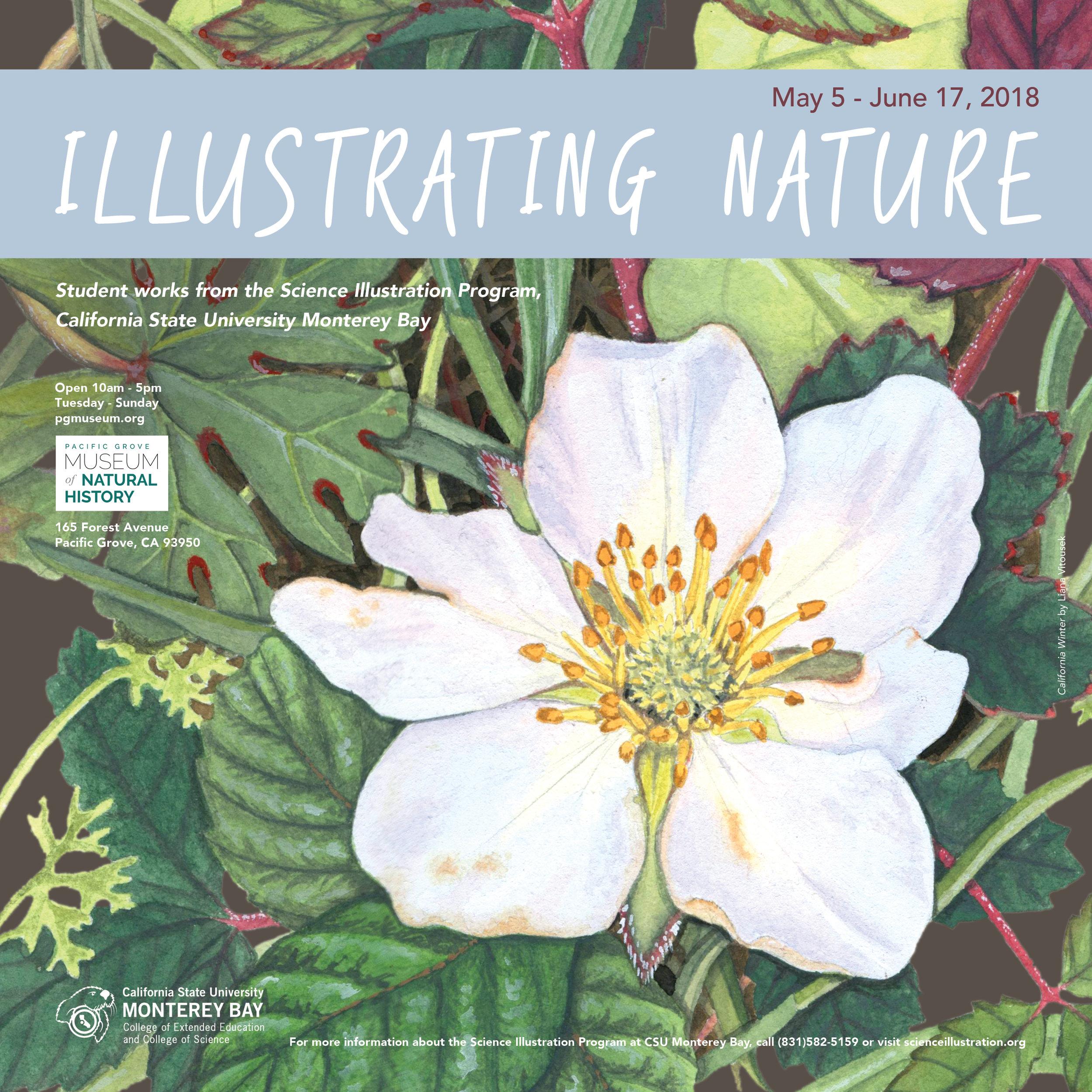 Illustrating_Nature_2018.jpg
