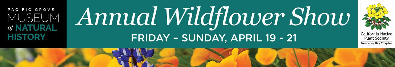 wildflower-show-banner-1500x257.jpg