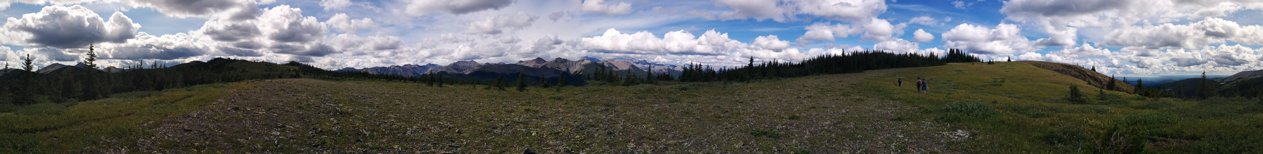 Field research site - Kananaksis, AB