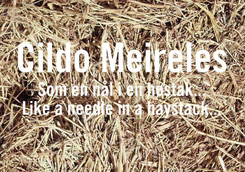 Upcoming Cildo Meireles show at Kunsthal 44 Møn. Produced & Curated by South Into North. 19th July-14th September.