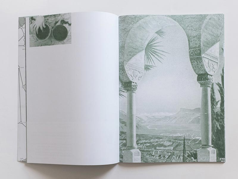 Nanna Debois Buhl, Palm Tree Studies in South Tyrol and Beyond, 2016, artist's book published by Humboldt Books