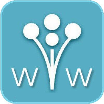 See our reviews on Wedding Wire