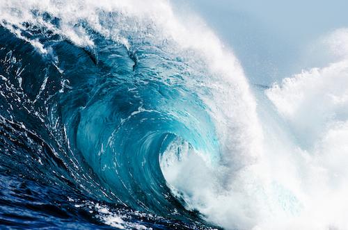 Action-Card-Blog--Observe-the-Emotional--Mind-the-Wave.jpg