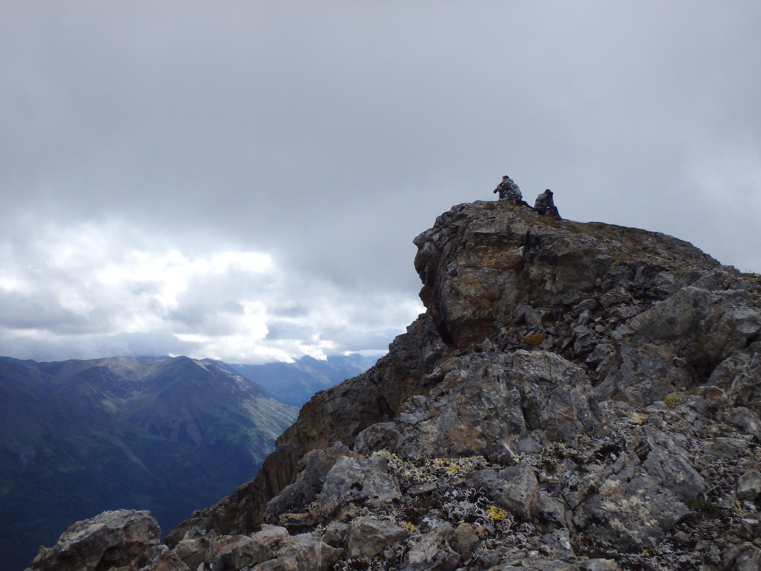Охота на барана Далла, Аляскинский хребет.