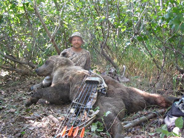 archery-brown-bear.jpg